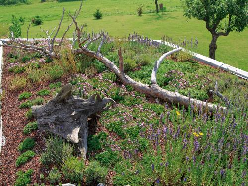 Green roof with dead wood