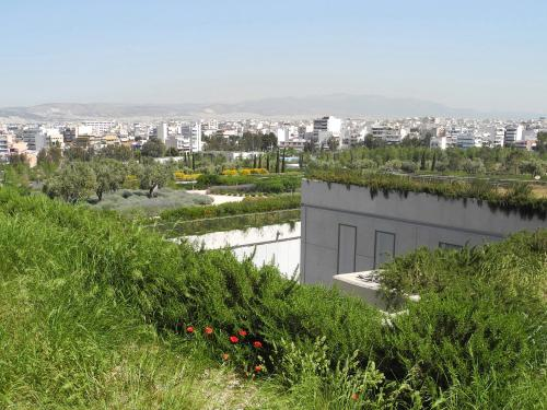 Lusciously vegetated green roofs