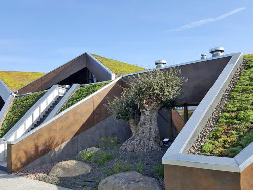Pitched green roof with various slopes