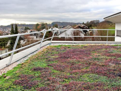 Vegetated roof with railing