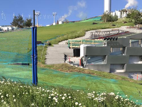 Grass growing through the synthetic mats on the skiing slope on a pitched roof.