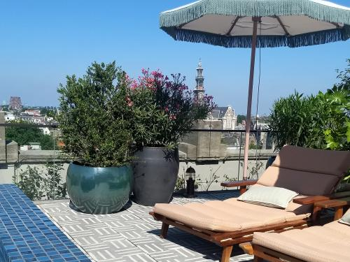 Roof terrace with deck chairs, parasols, plant planters and a swimming pool