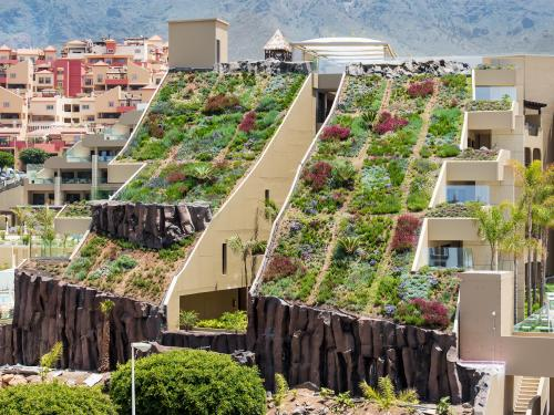 Steep pitched green roof